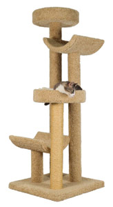 Molly and Friends Step Stool Sleeper Cat Tree