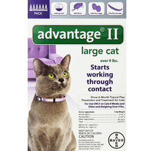 Bayer Advantage II Cat Flea Treatment