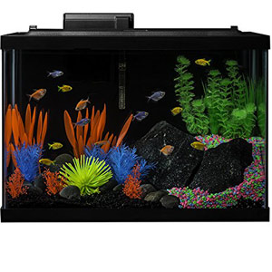 Tetra Aquarium Kit